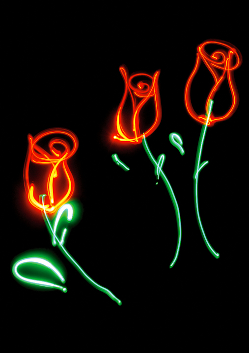 A light drawn photograph of 3 red roses on green stems