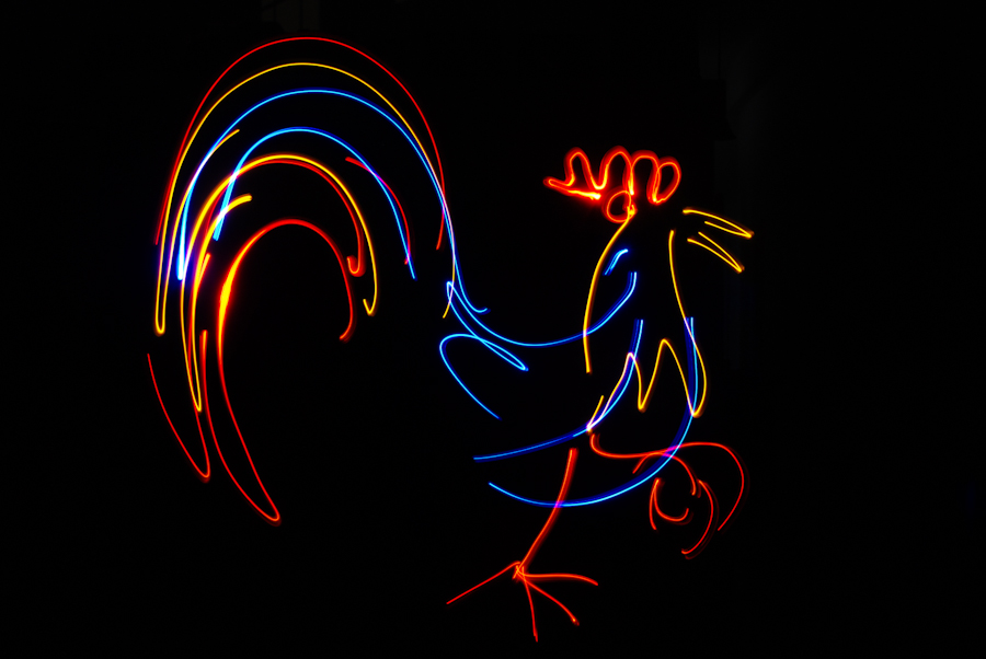 Profile of a rooster drawn with light pens in our photo booth